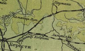 Физическая карта Украины и смежных земель Кубийовича и Кулицкого. (1939)